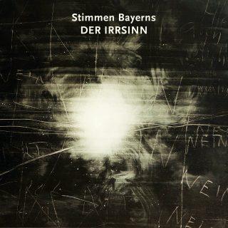 Stimmen Bayerns - Der Irrsinn 1